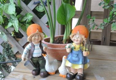 養鵝橘子小孩 14D0115