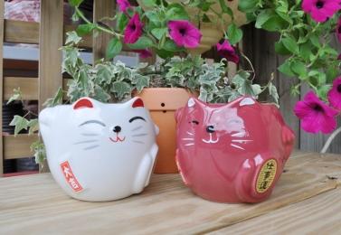 招財貓造型陶盆