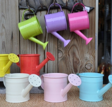 彩色澆水壺    (共8色)